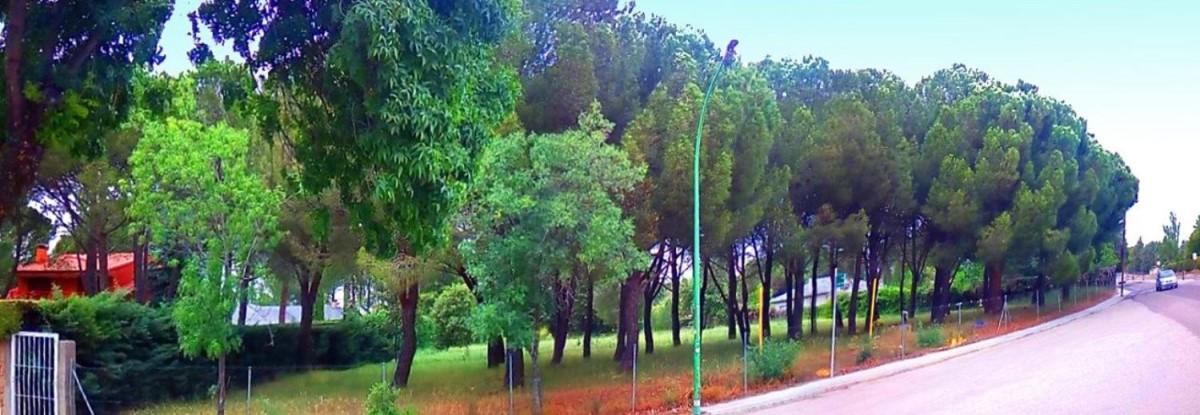 Suelo Urbano en Venta en  Escorial, El