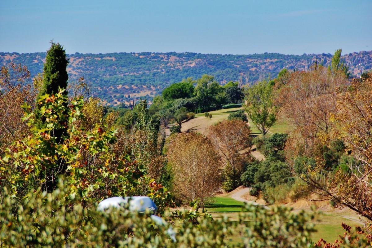 Suelo Urbano en Venta en Club De Golf, Rozas de Madrid, Las