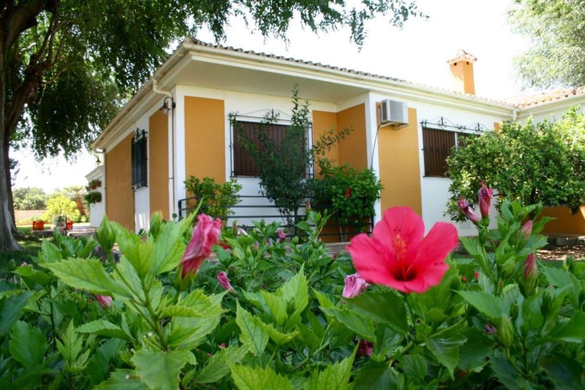 Casa Rural en Venta en  Mairena del Alcor
