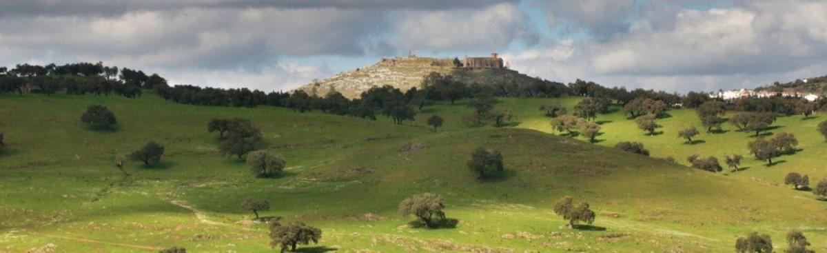 Chalet en Venta en  Aracena