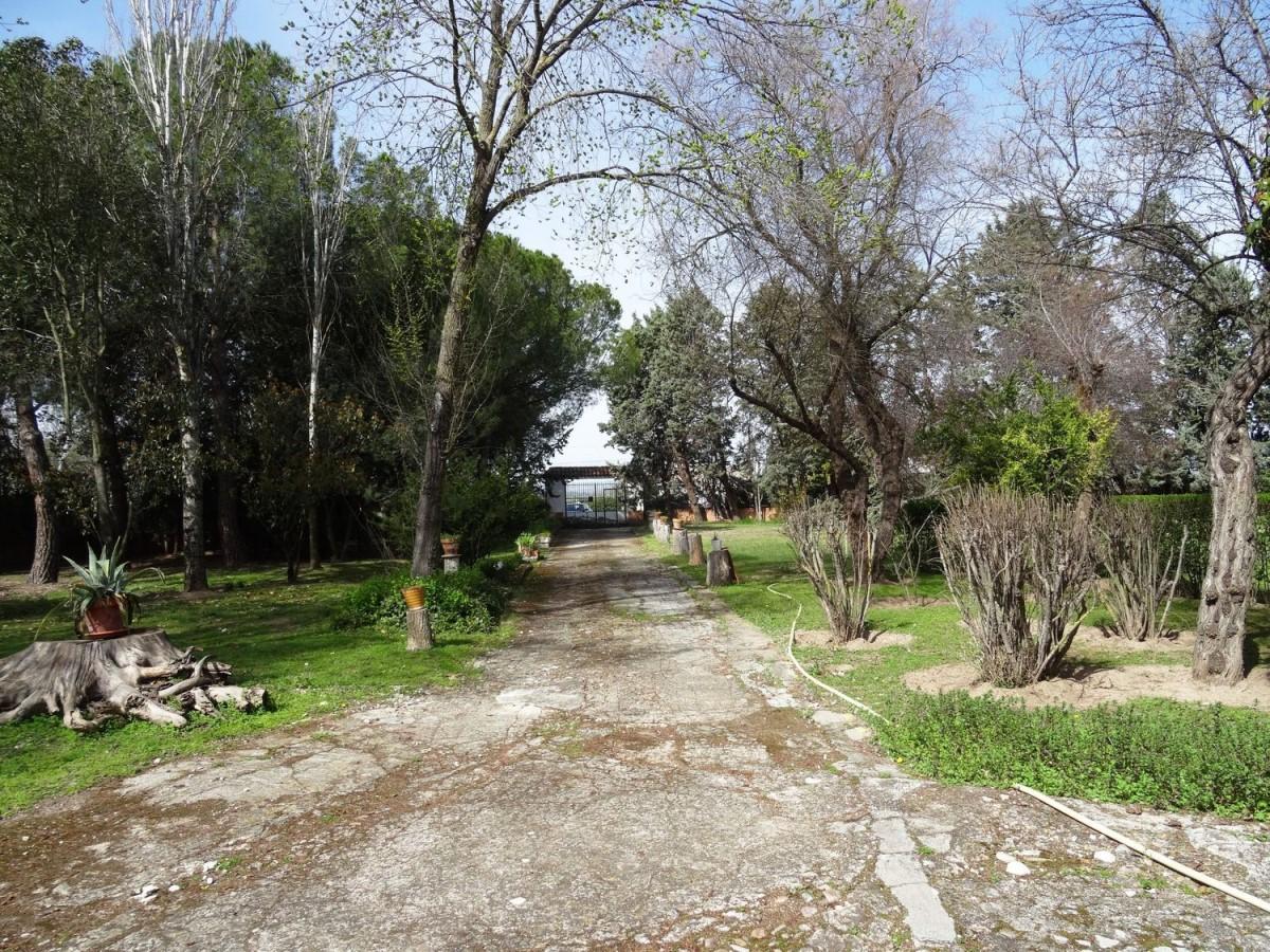 Suelo Urbano en Venta en  Fuente el Saz de Jarama