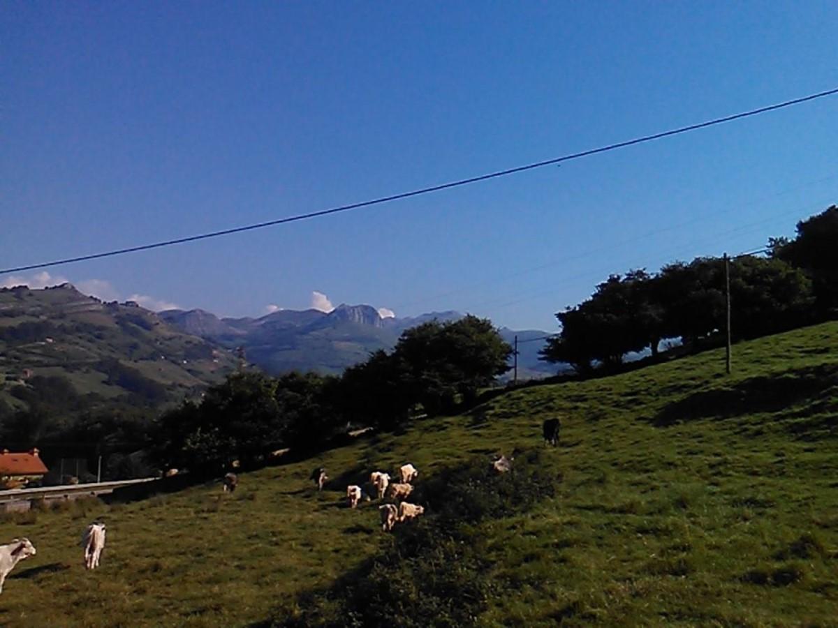 Casa Rural en Venta en  Liérganes