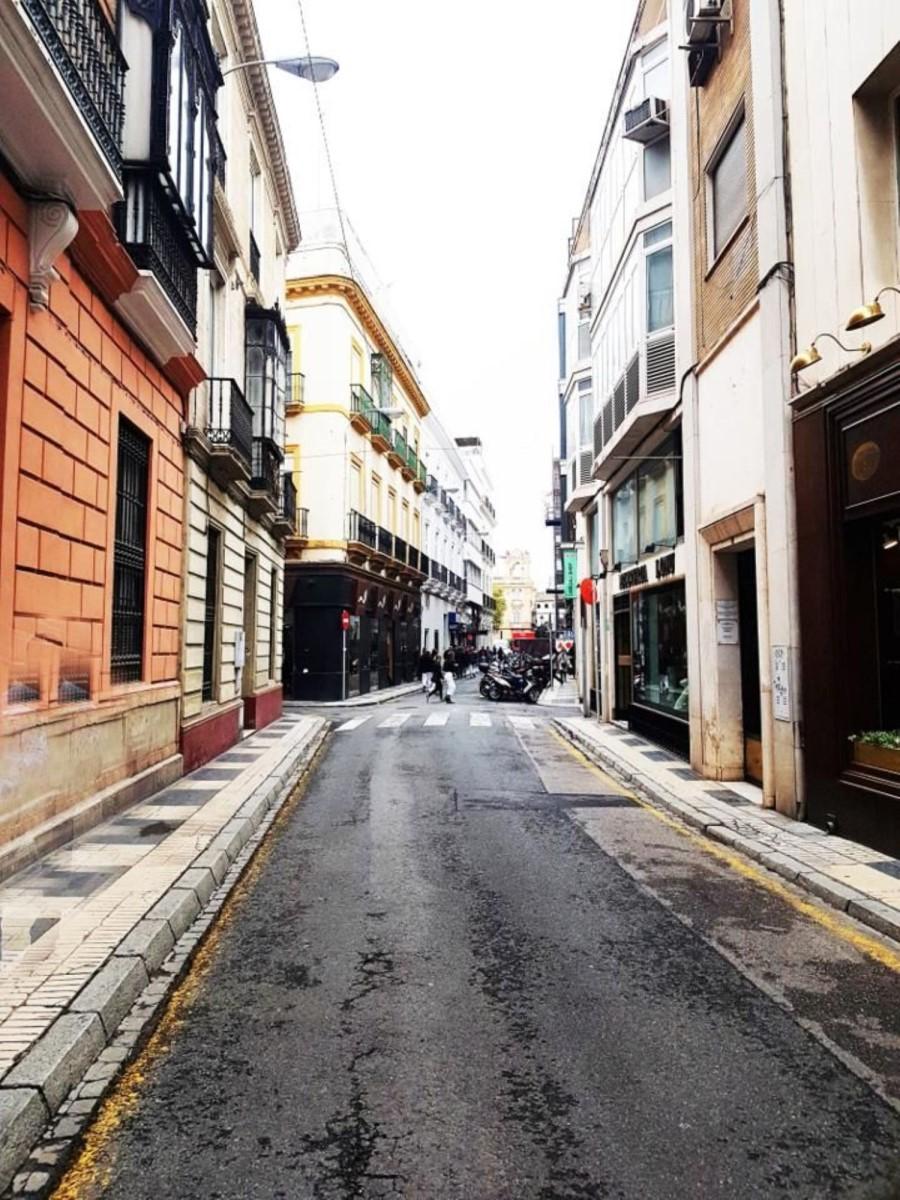 Loft en Alquiler en centro, Sevilla