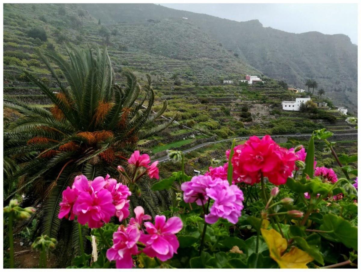 Casa Rural en Venta en  Hermigua
