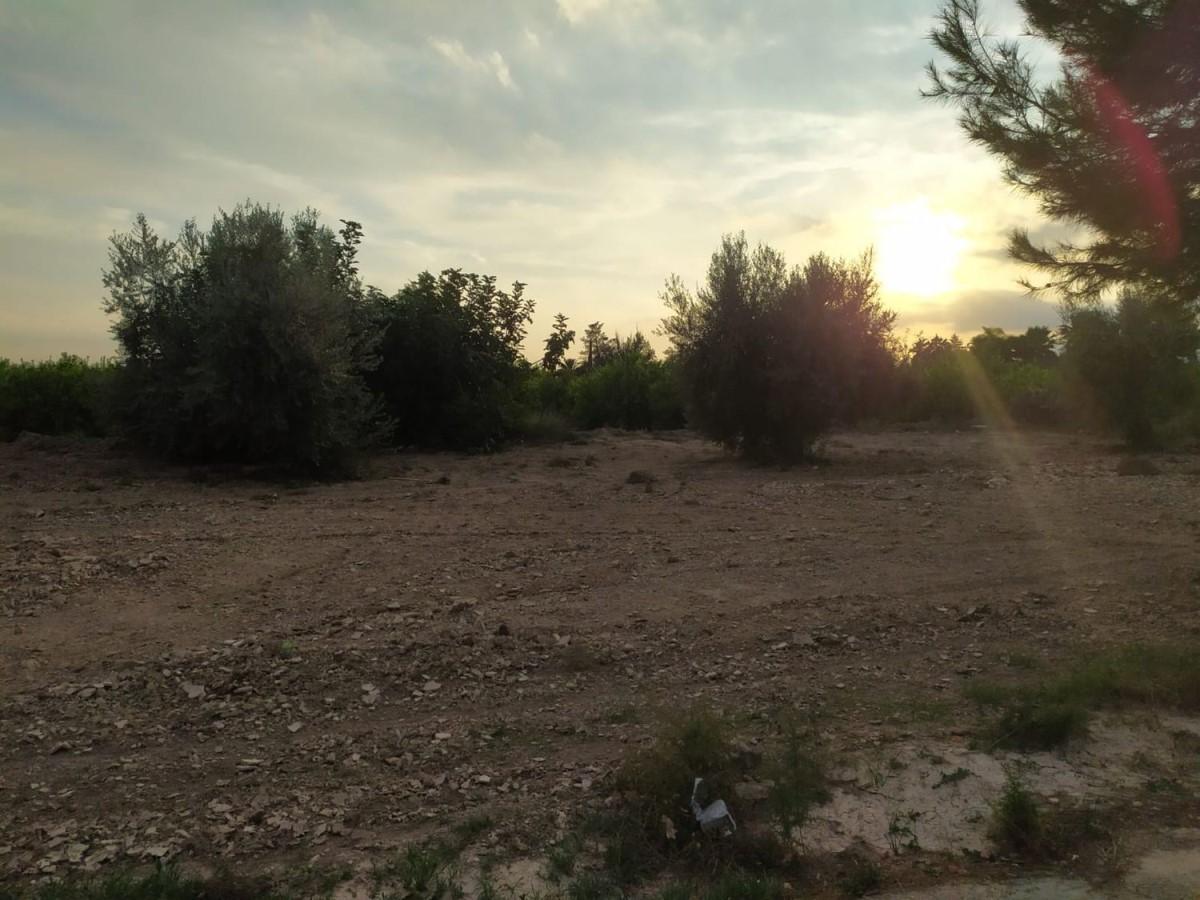 Suelo No Urbano en Venta en  Molina de Segura