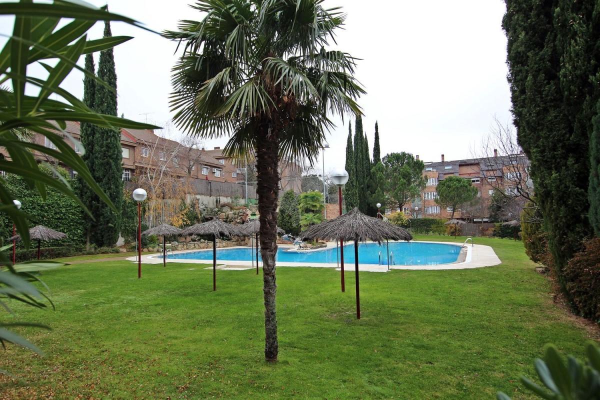 Piso en Alquiler en El Burgo, Rozas de Madrid, Las