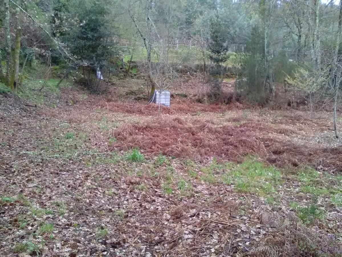 Urban lot  For Sale in  Arbo