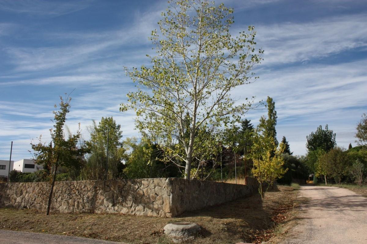 Urban lot  For Sale in Monte Rozas, Rozas de Madrid, Las