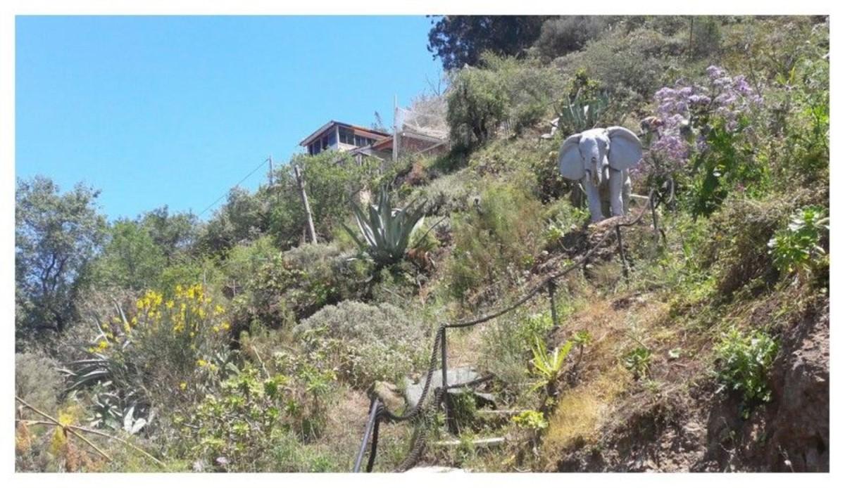 Casa Rural en Venta en  Vega de San Mateo