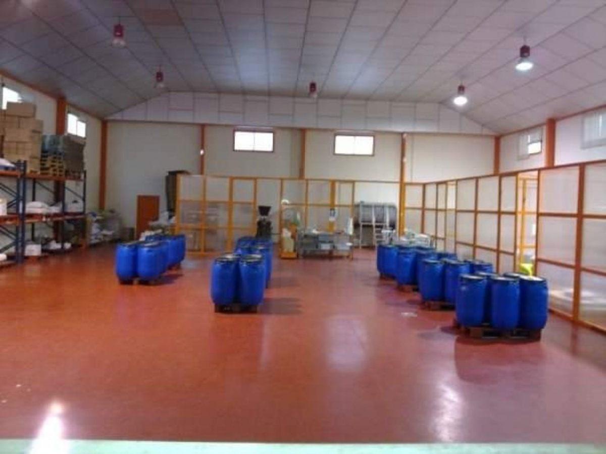 Nave Industrial en Venta en  Las Torres de Cotillas
