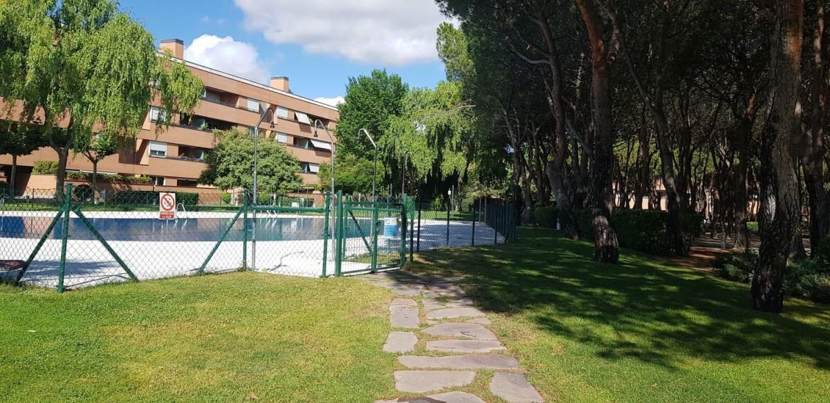 Piso en Alquiler en Zona Prado De Somosaguas - La Finca, Pozuelo de Alarcón