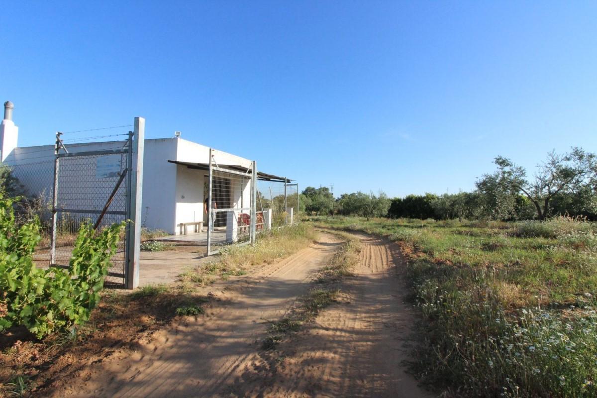 Casa Rural en Venta en  Villarrasa