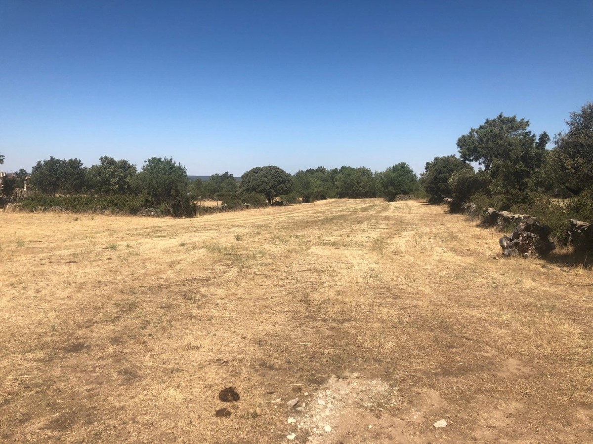 Urban lot  For Sale in  Pedraza