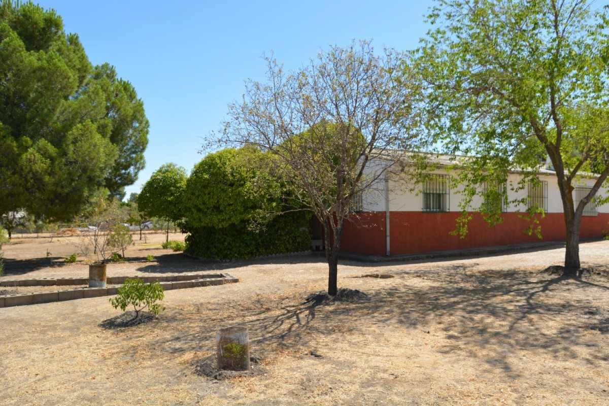 House  For Sale in  Fuentidueña de Tajo