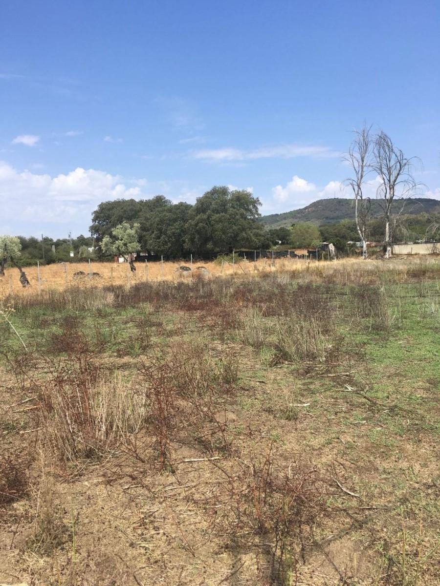 Casa Rural en Venta en  El Pedroso