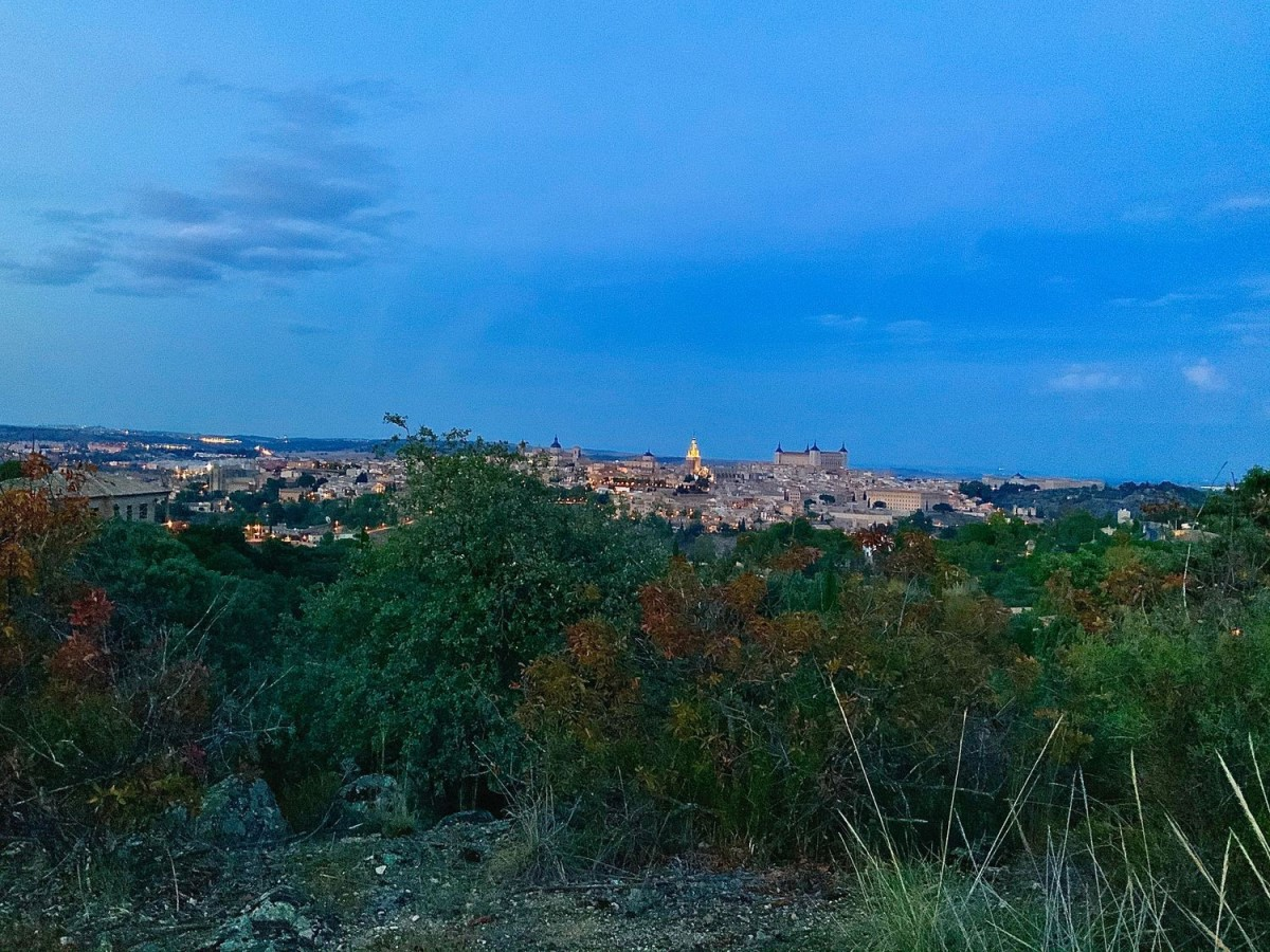 Urban lot  For Sale in  Toledo