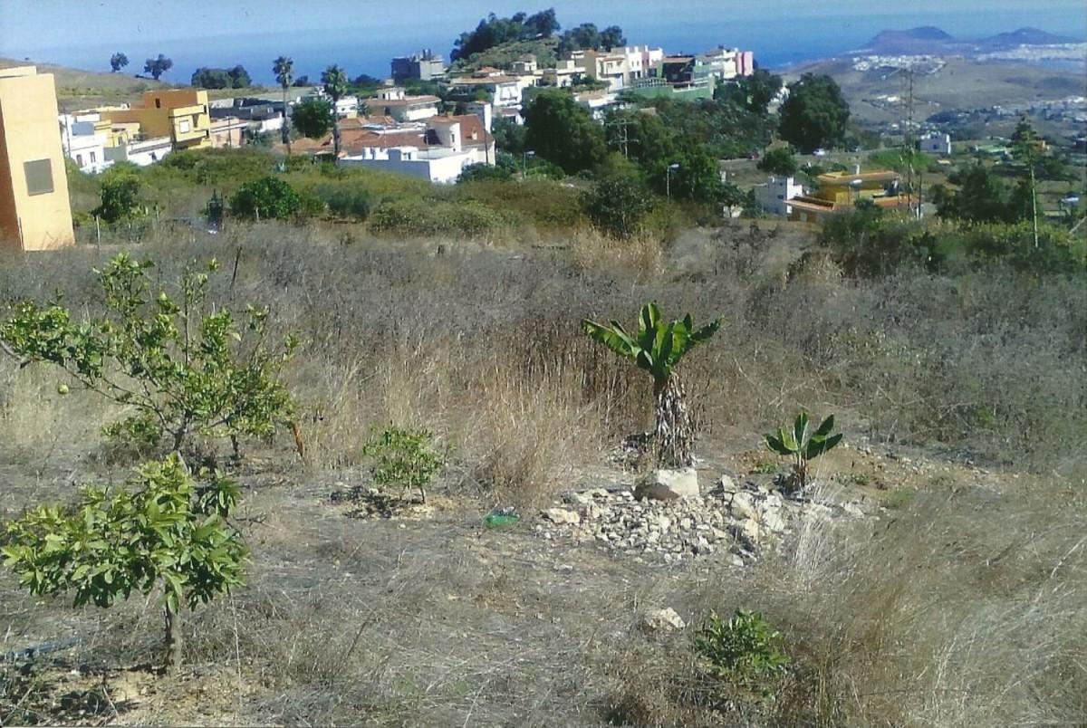 Suelo No Urbano en Venta en Tamaraceite, Palmas de Gran Canaria, Las