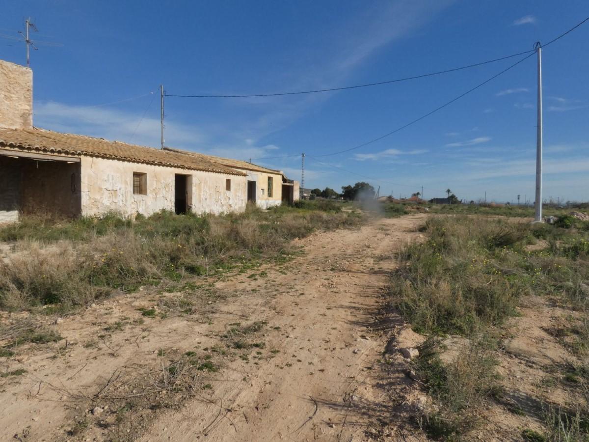 Suelo No Urbano en Alquiler en  Elche/Elx
