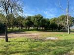 Casa Rural en Venta en  Cebreros